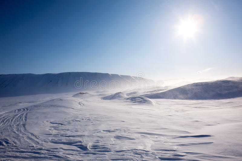 Blowing Snow royalty free stock photography