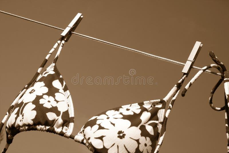 Blowing in the wind/sepia tone. Bikini bra drying and blowing in the wind stock image