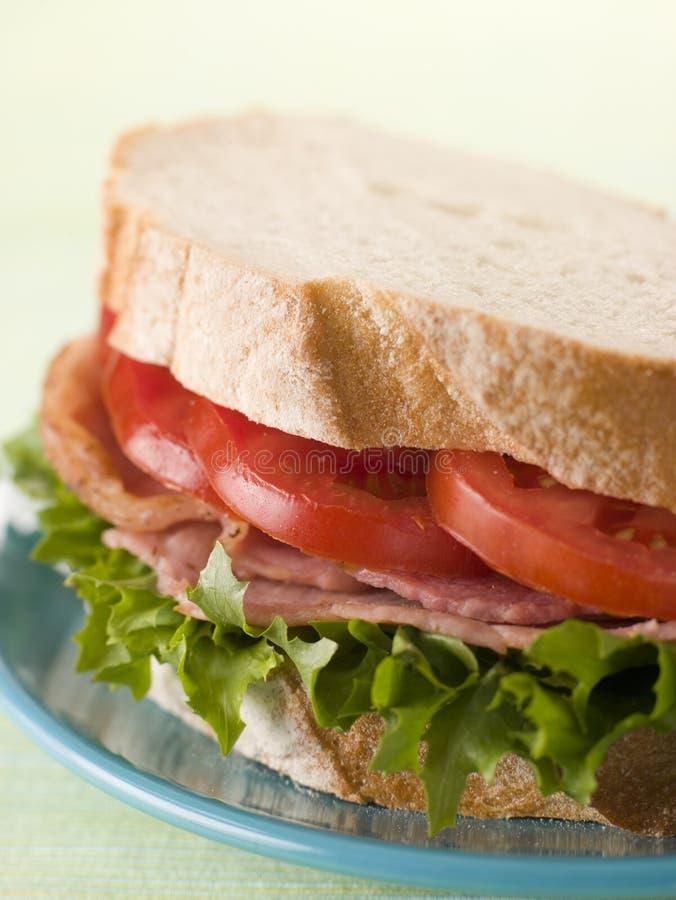 BLT no pão branco fotografia de stock
