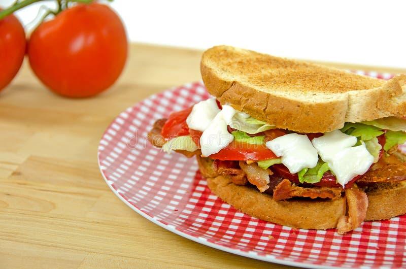 BLT-smörgås med tomater arkivfoton