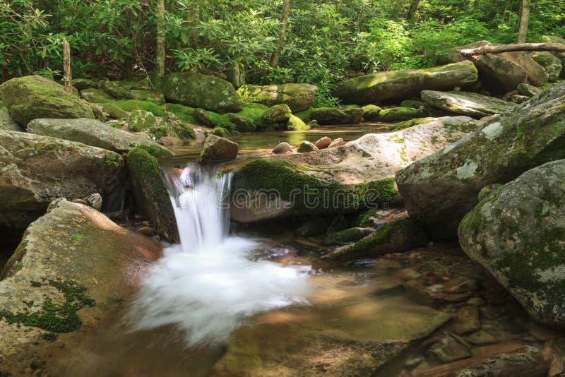 Blu Ridge North Carolina della torrente montano fotografia stock libera da diritti