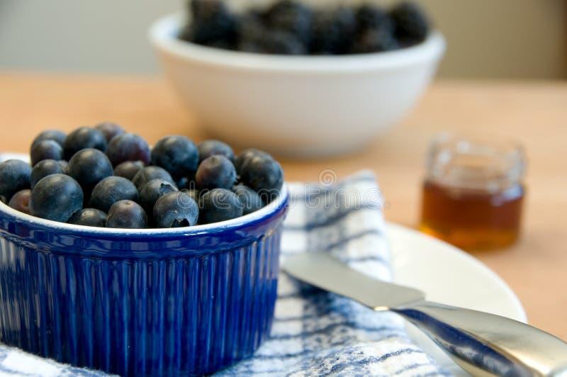 bluberries φρέσκος πίνακας τιμής τών & στοκ φωτογραφίες με δικαίωμα ελεύθερης χρήσης