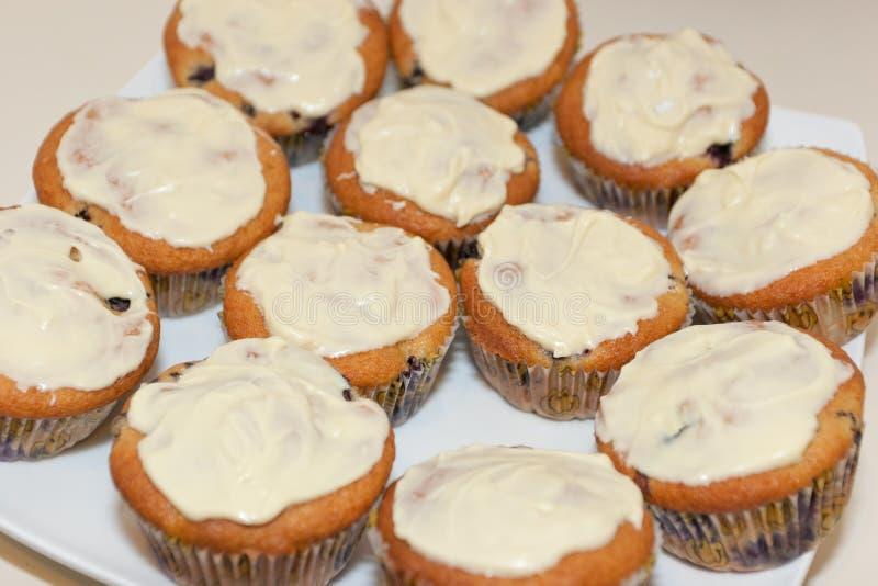 Bluberry Cupcakes Stock Photos