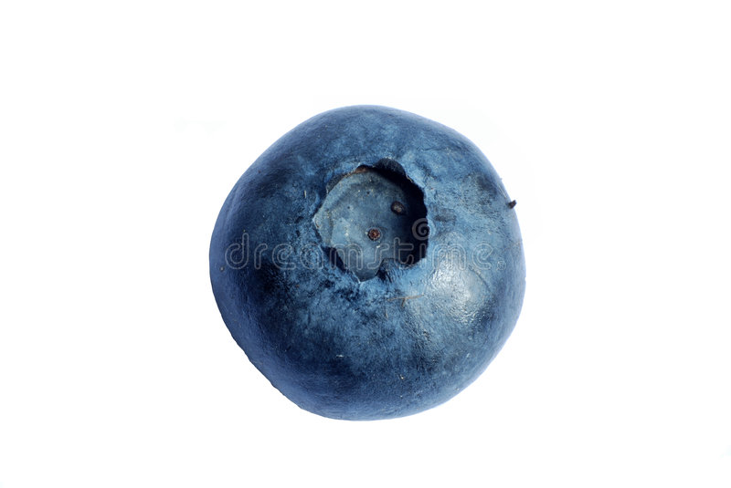 Bluberry macro royalty free stock image