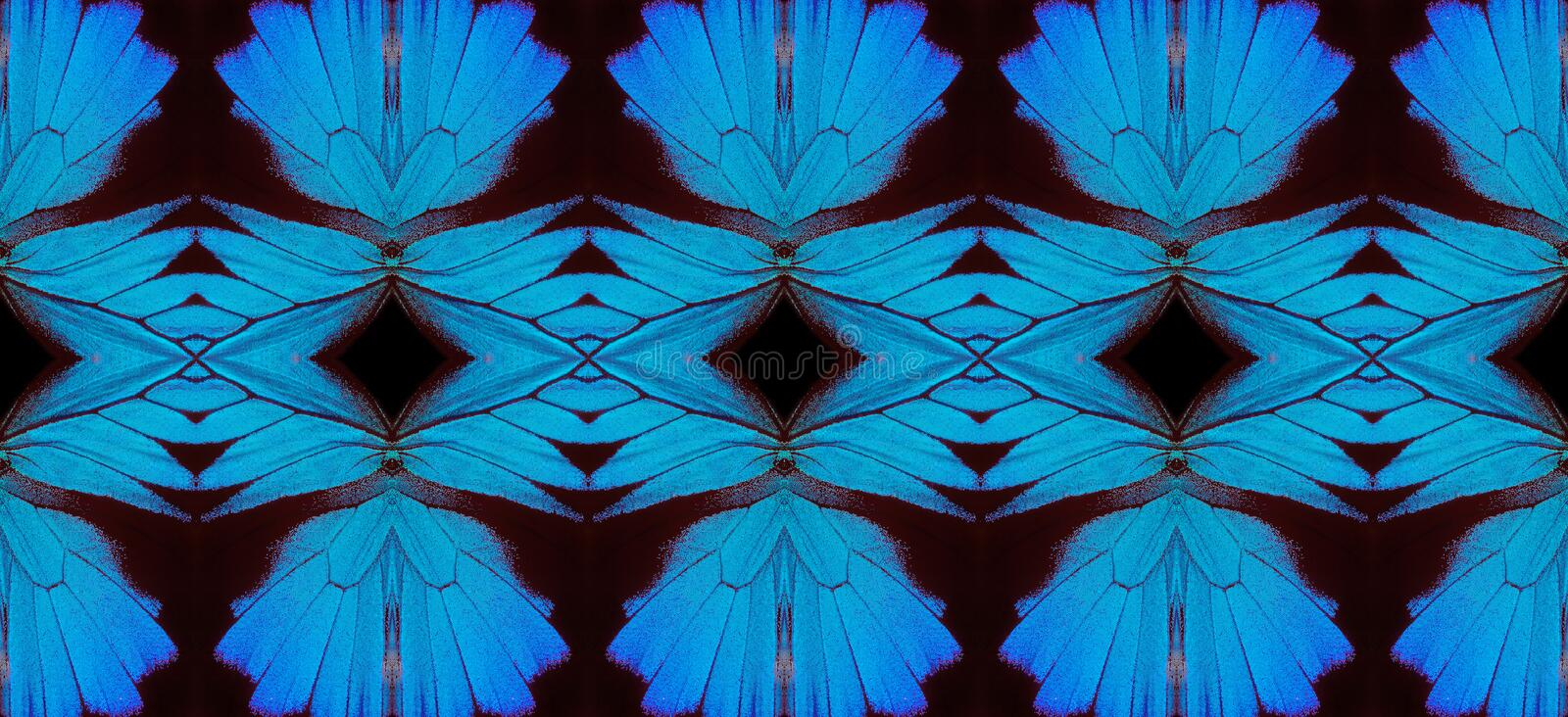 Blue abstract pattern. Wings of the butterfly Ulysses. Ornament from the wings of butterflies. royalty free stock photo