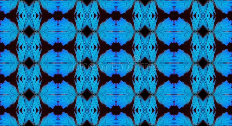 Blue abstract pattern. Wings of the butterfly Ulysses. Ornament from the wings of butterflies. stock photo