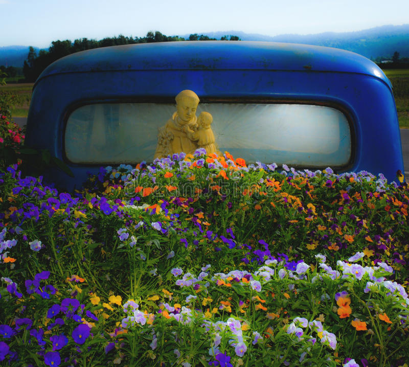 Blue Antique Ford Truck Garden. Old blue Ford truck bed garden with St Francis statue. Oregon mountains in background royalty free stock images