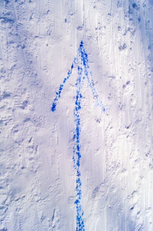 Blue arrow indicating direction of upward movement.  stock photography