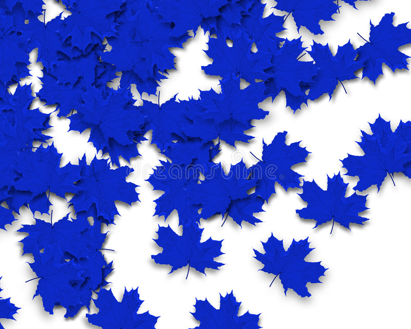 Blue Autum Background. Autum Background with blue fall leaves stock photos