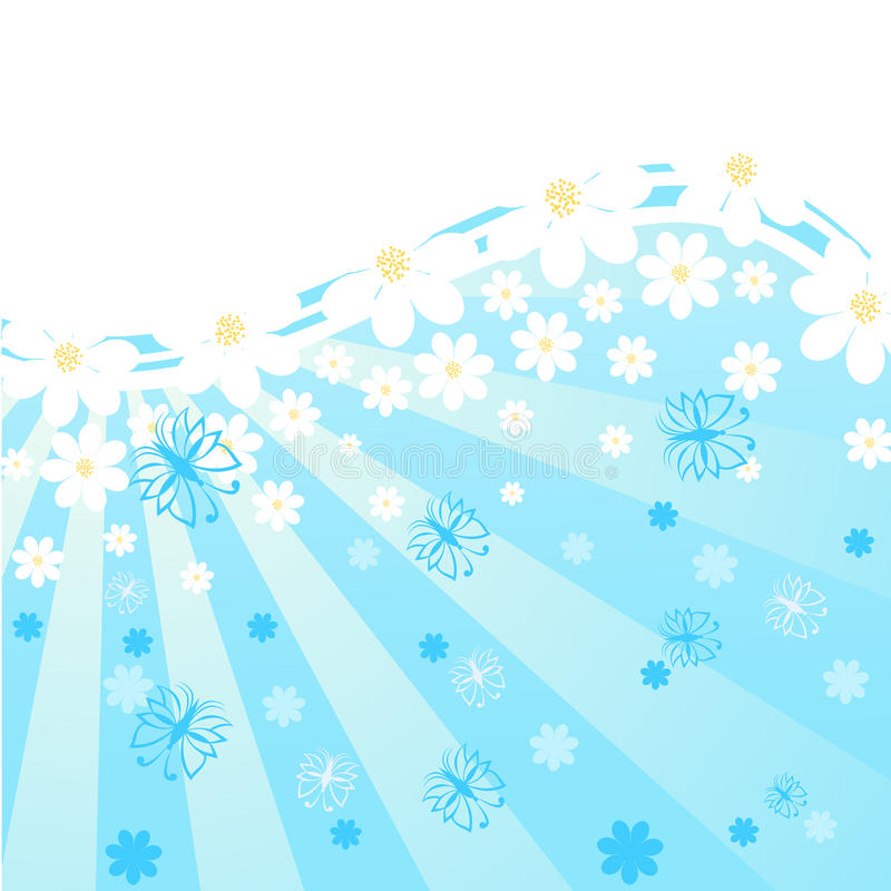 blue background with daisies, stock photos
