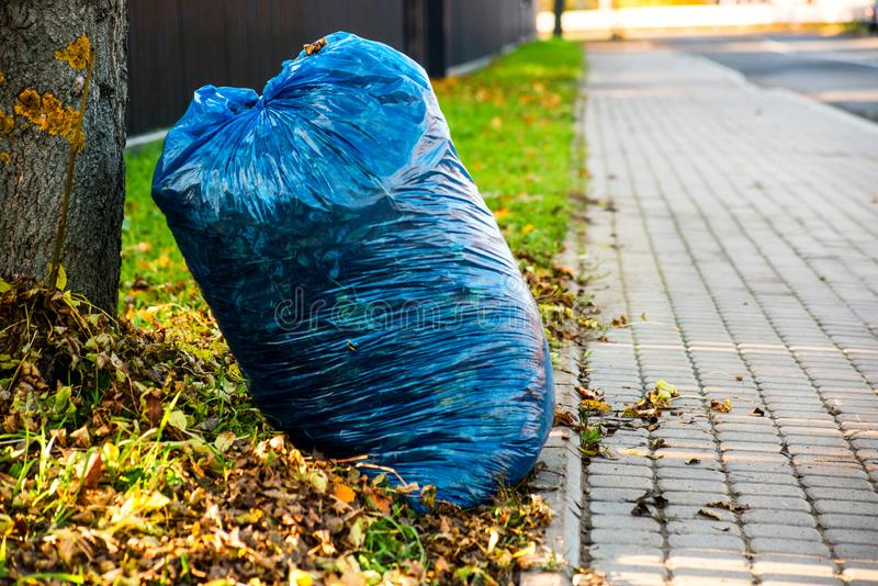 Blue bag with leaves near paving stones. Bag with leaves near paving stones royalty free stock photography