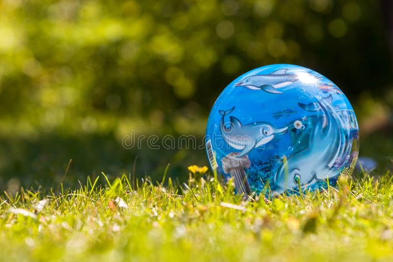 Blue ball with dolphins lies on the bright green grass with yellow grass. royalty free stock images