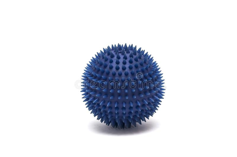 Blue ball for playing with animals on a white background. Isolated stock images