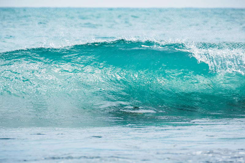 Blue barrel wave in tropical ocean. Wave crashing and sun light. Clear water. royalty free stock image
