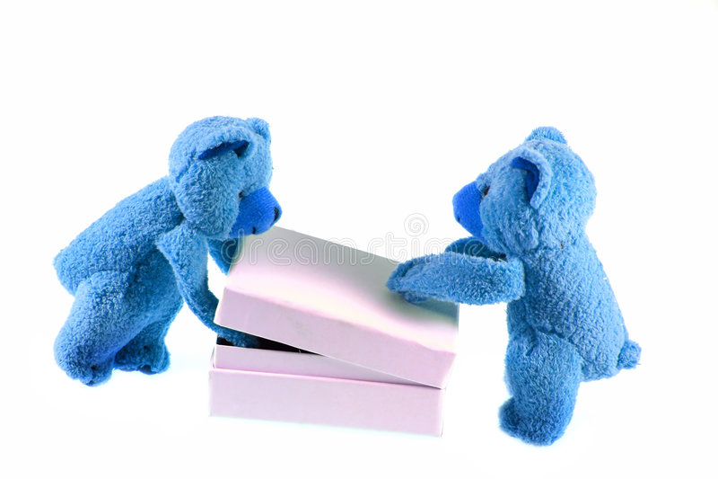 Blue bears. Blue polar teddys opening the white box stock photography