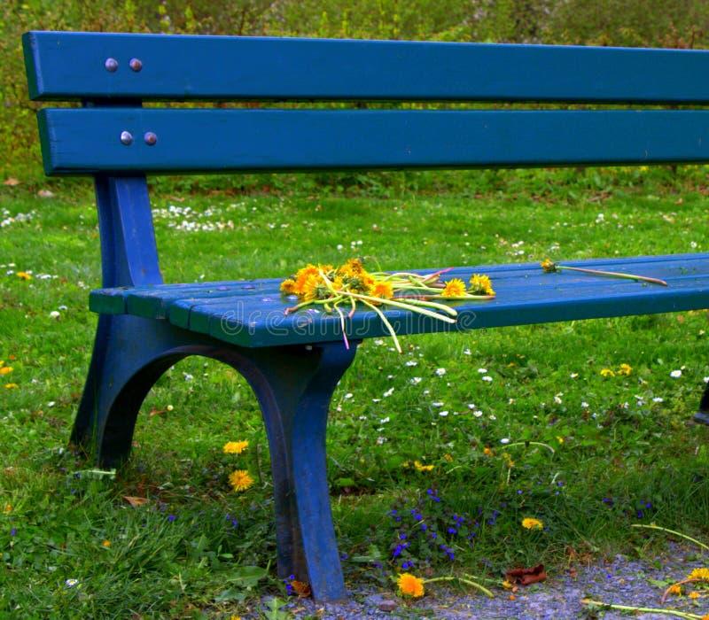 Blue bench royalty free stock photos