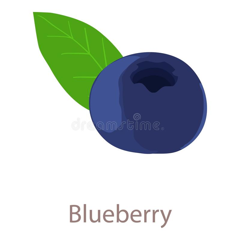 Blue berry icon, isometric 3d style royalty free illustration