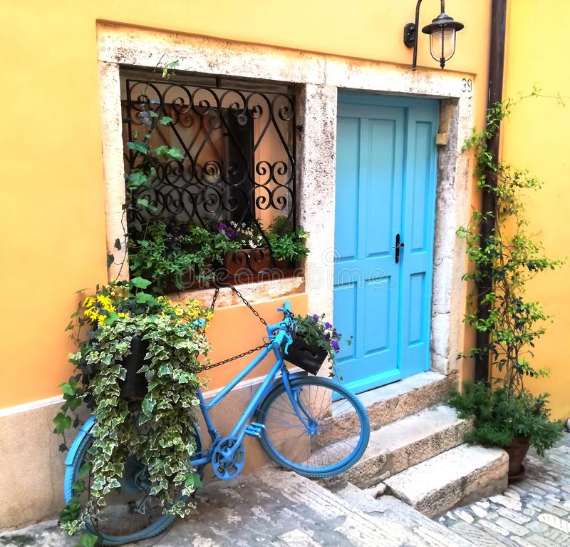 Blue bicycle and flowers. Blue bike with purple and yellow flowers on the streets of Rovinj stock photography