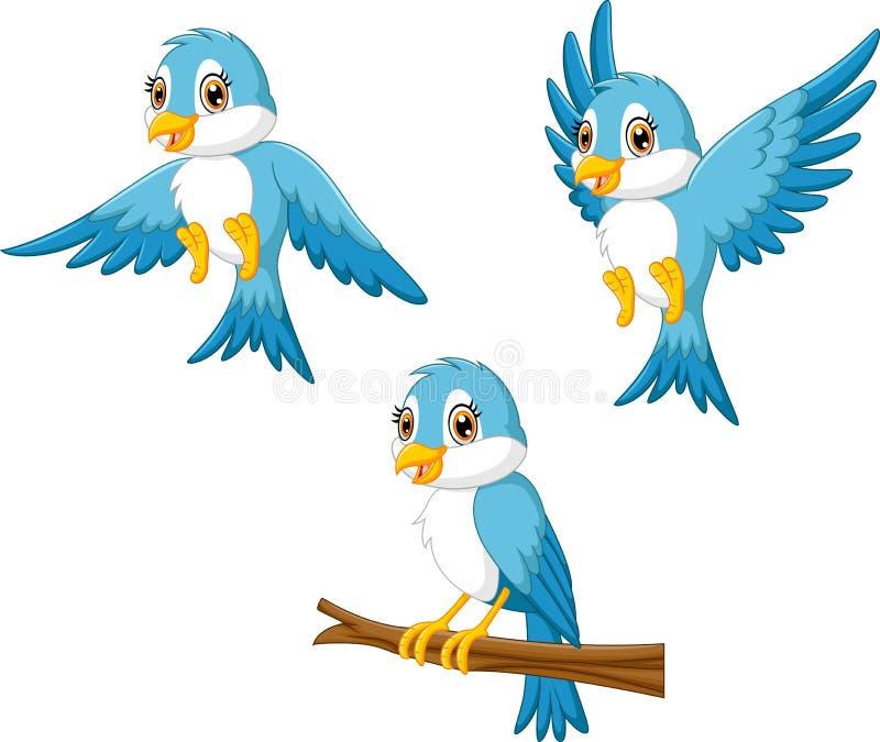 Blue bird cartoon stock illustration
