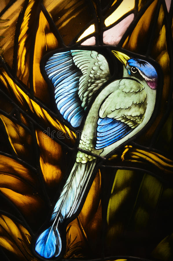 Blue Bird Stained Glass. A bird with blue, white and pink feathers and a yellow beak on a stained glass window stock image
