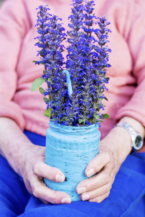 Blue bouquet of blooming flowerst in senior woman's hands royalty free stock photos