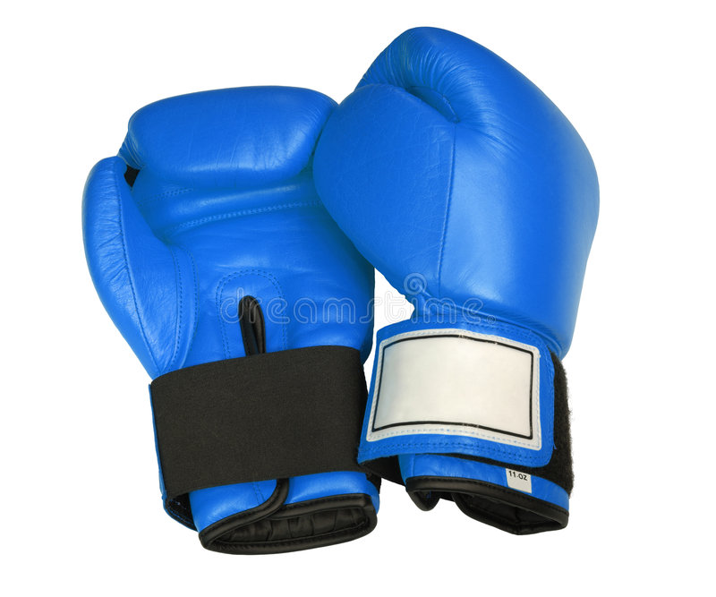 Blue Boxing Gloves. Separated on white royalty free stock image