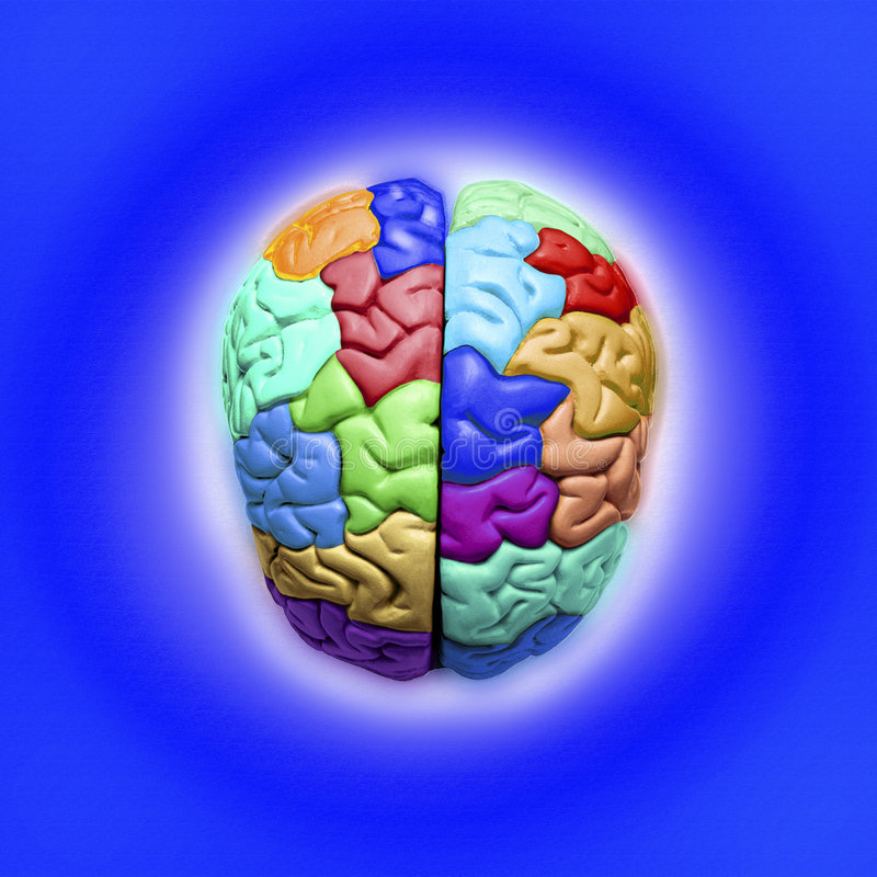 Blue Brain. Multicolored brain on a blue background royalty free stock photo