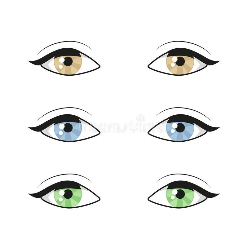 Blue brown green Eyes on white background. Woman eyes. The eyes logo. Human set eyes close up vector illustration vector illustration