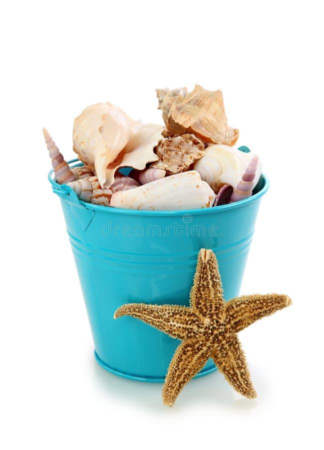 Blue bucket with seashells royalty free stock image