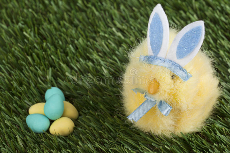Download Blue bunny staring stock photo. Image of decoration, colorful - 26551692