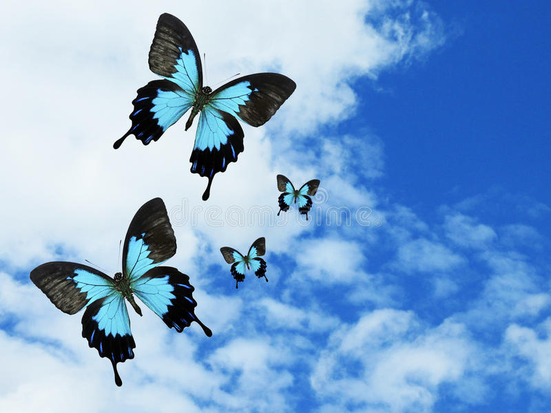 Blue Butterflies in Sky stock illustration