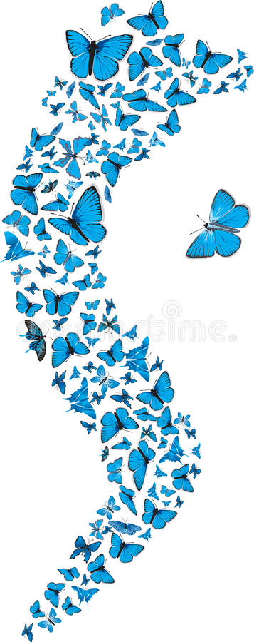 Download Blue butterflies swarm stock vector. Image of collection - 20155248