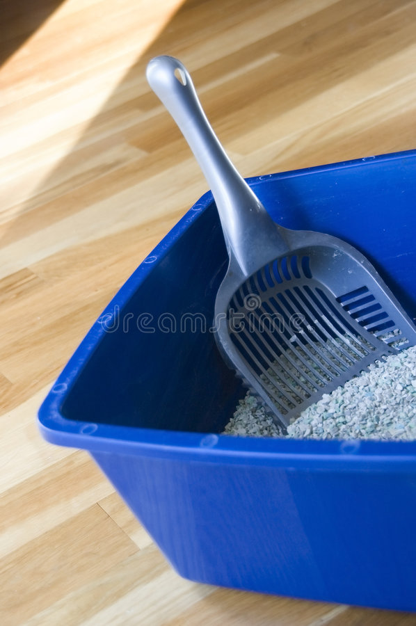 Blue cat box with litter stock image
