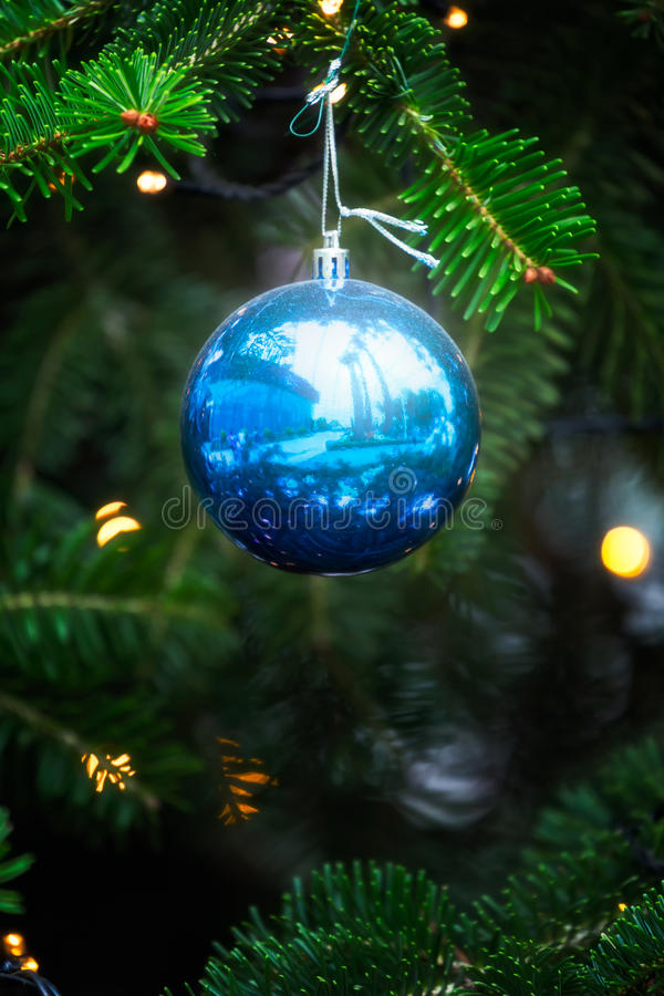 Blue christmas ball. On fir branch background stock images