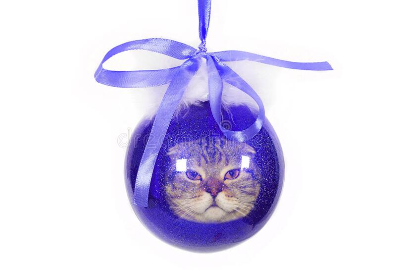 Blue Christmas toy with Banik and cat face on white background.  stock image