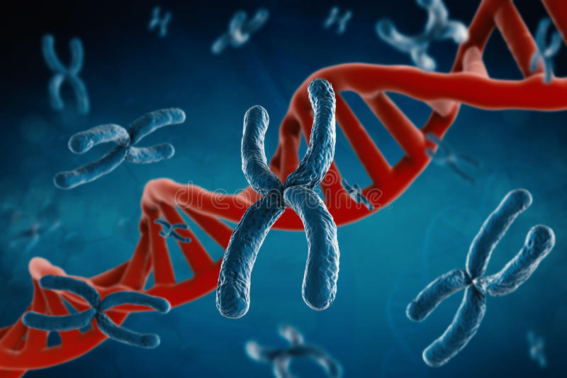 Blue chromosome. 3d rendering blue chromosome with dna helix on blue background royalty free stock photography