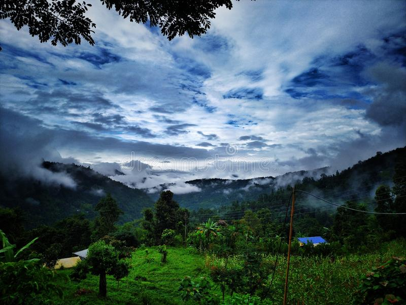 Blue cloudy sky with deep green Forest royalty free stock photography