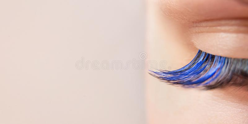 Blue color eyelash extensions. Trendy false lash style close-up, closed eye macro. Wide banner or background with copy space.  stock photos