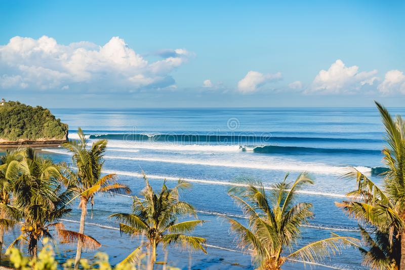 Blue crashing wave in ocean and coconut palms on a beach. Crystal wave in Bali royalty free stock photos