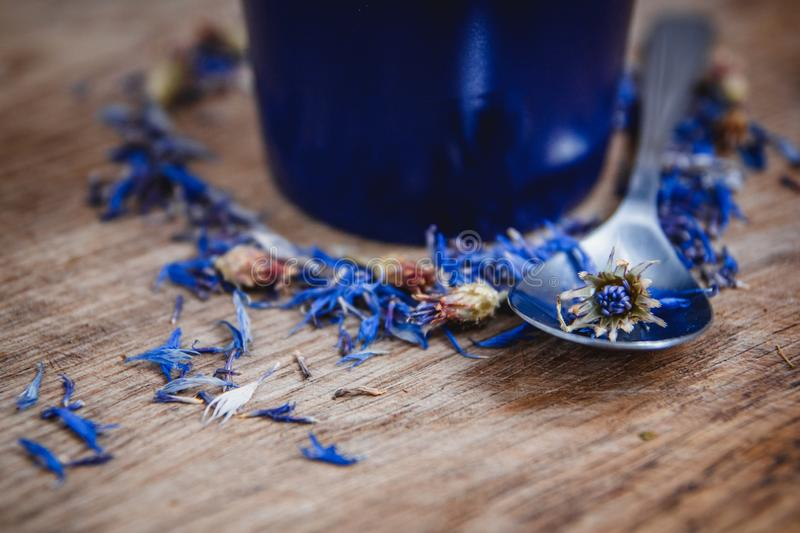 Blue cup and spoon with flowered black tea on a wooden background. Breakfast, health, herbal therapy, healthy food stock photos