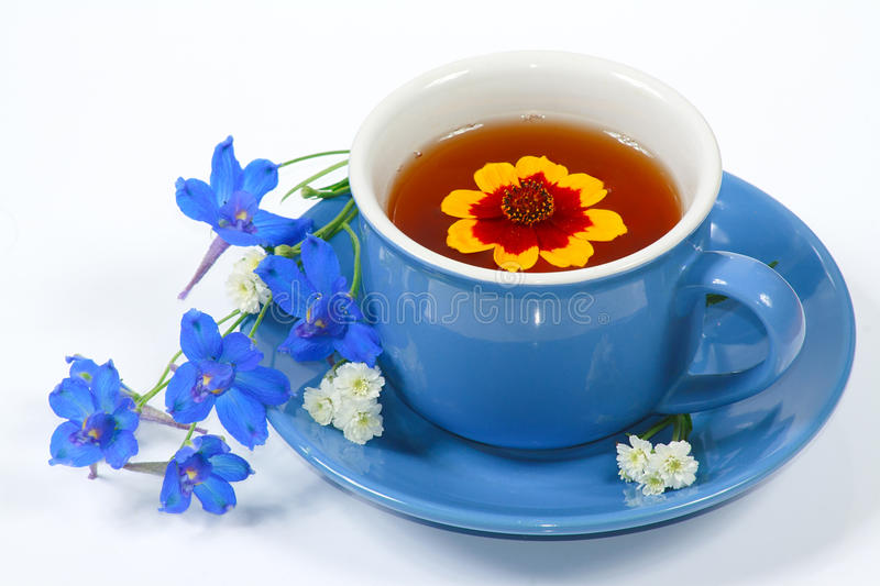 Blue cup of tea with flowers stock images