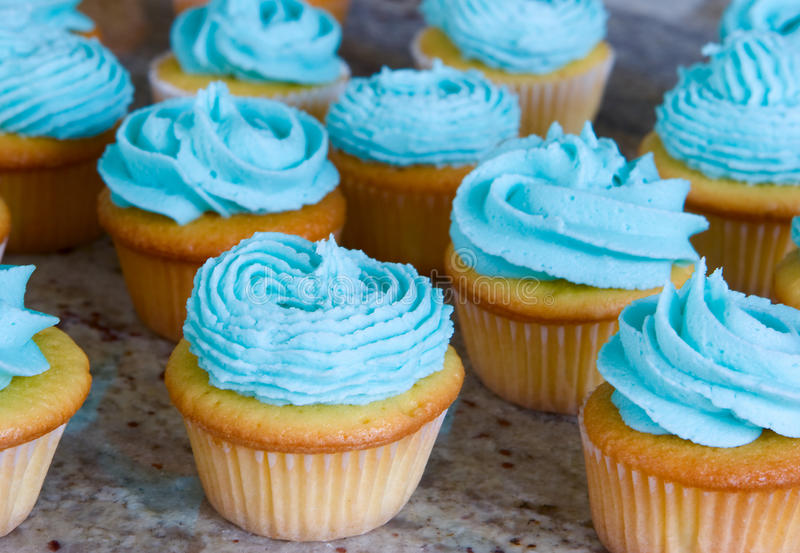 Blue cupcakes. Lots of cupcakes with blue icing stock images