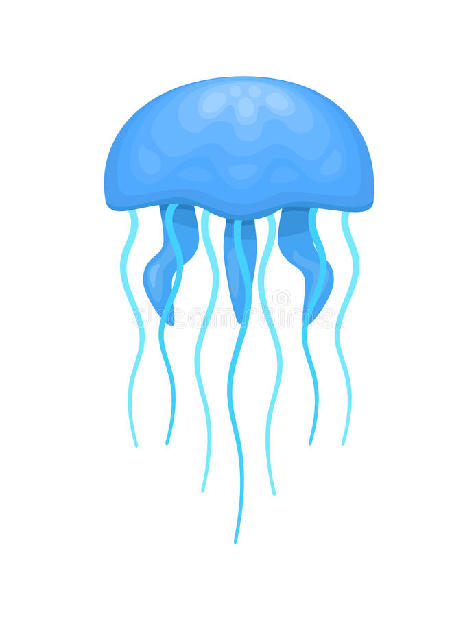 Blue and cyan jellyfish. With thick and thin tentacles, stylized illustration vector illustration