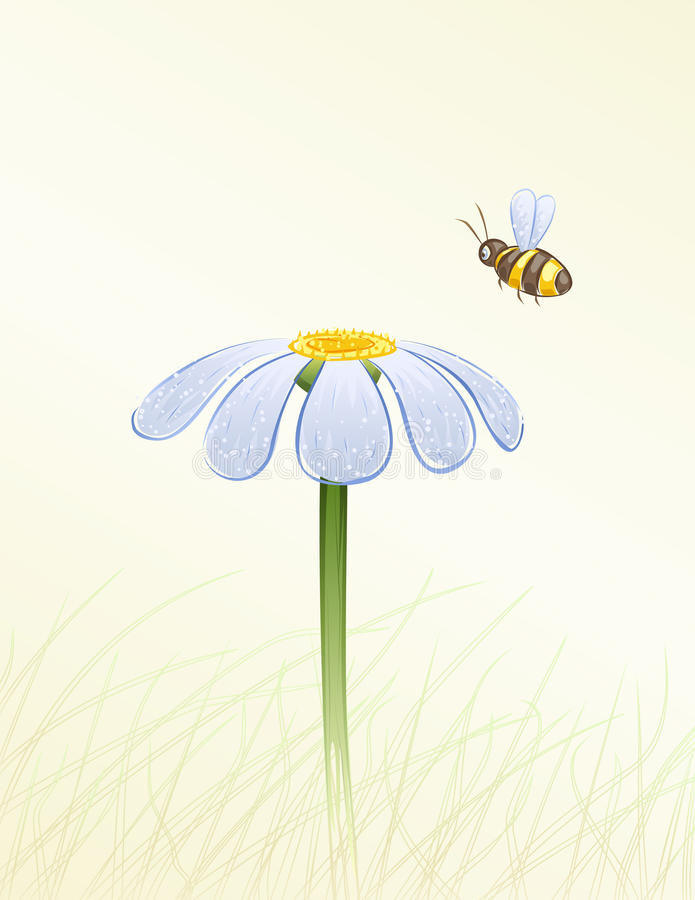Download Blue daisy and a bee stock vector. Illustration of aquarelle - 10103480