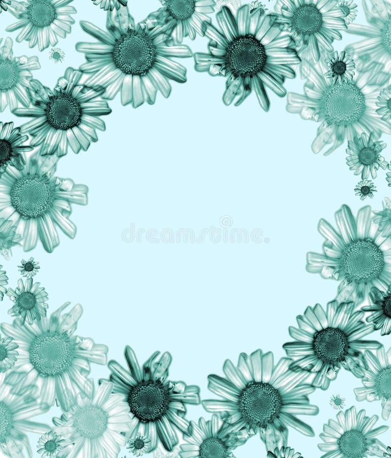 blue daisy rama ilustracji