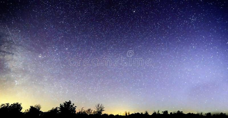 Blue dark night sky with many stars above field of trees. Yellowstone park. Milkyway cosmos background. Blue dark night sky with many stars above field of trees stock photo