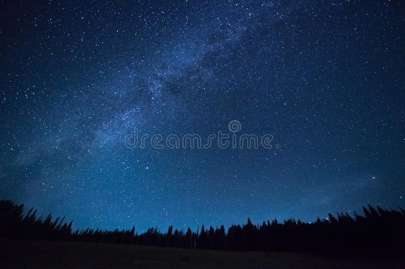 Blue dark night sky with stars above field of trees. Blue dark night sky with many stars above field of trees. Yellowstone park. Milkyway cosmos background royalty free stock photos