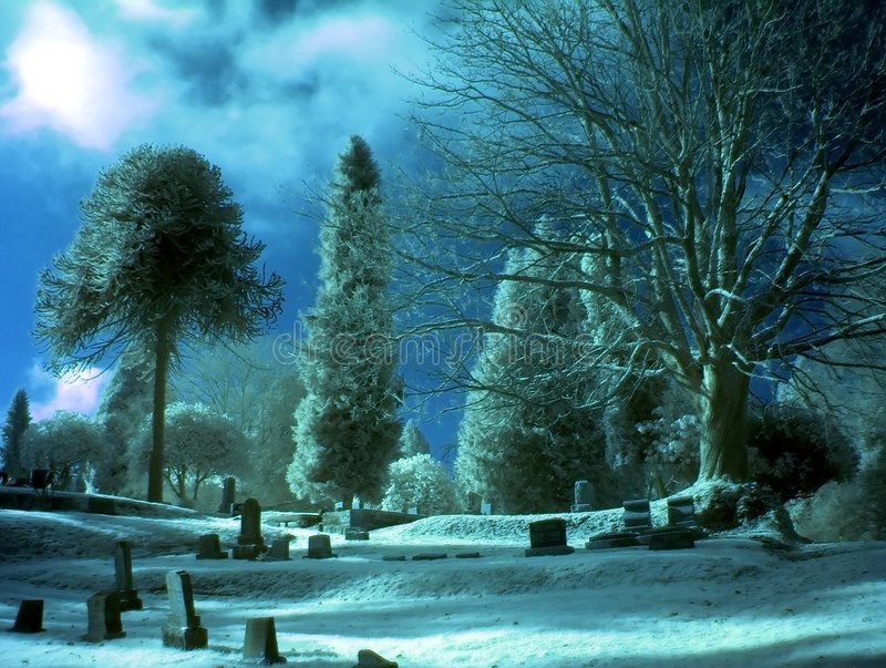 Download Blue Day stock photo. Image of graves, church, forest, crypts - 73150