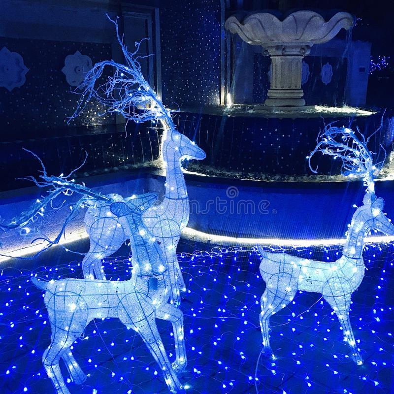 Blue deer and light at night. Blue light at night, make lunar new year more beautiful and warm, perhaps someone will like this royalty free stock images