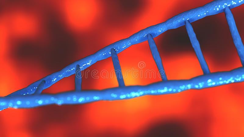 Blue DNA molecules Abstract technology science concept of biochemistry animation 3D rendering stock illustration